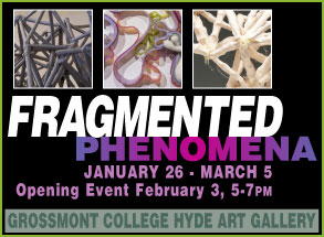 Fragmented Phenomena, Jan. 26 - March 5, Hyde Art Gallery